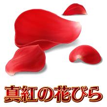 真紅の花びら